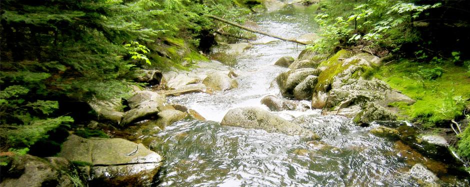 riviere2