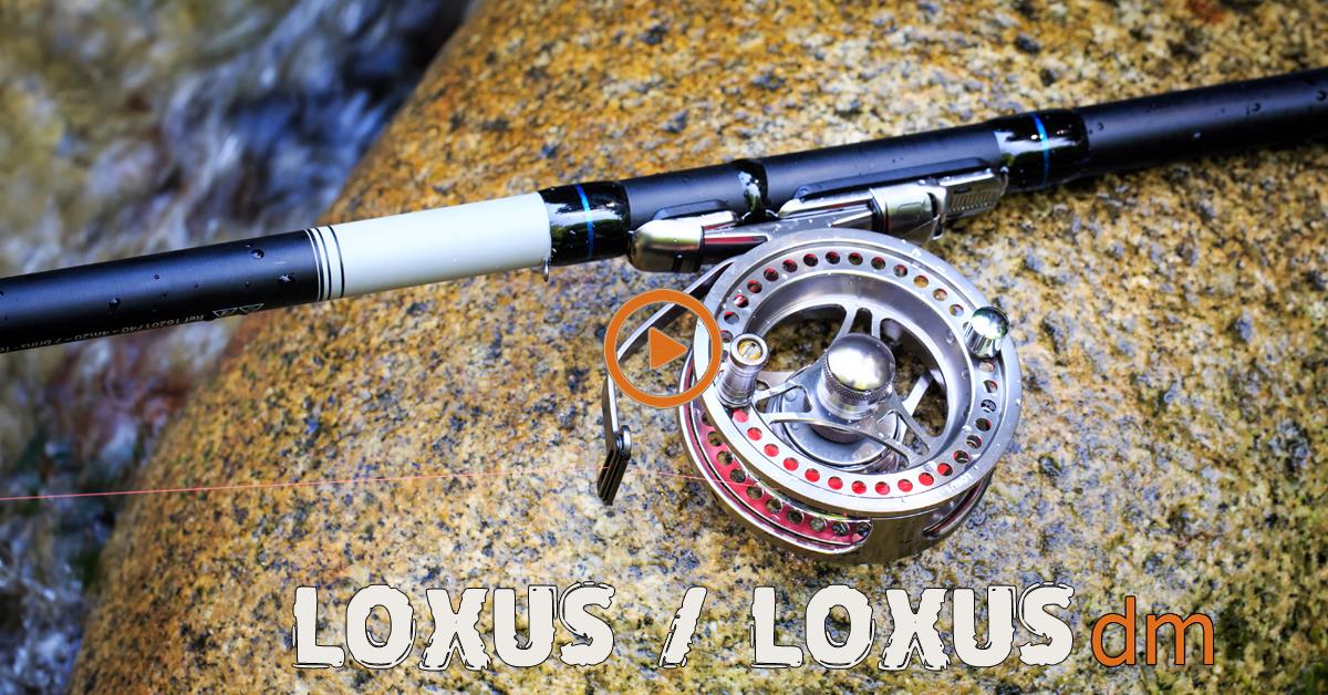 LOXUS-LOXUSDM
